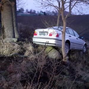 pomoc drogowa auto obok drzewa